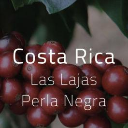 Green Bean Kopi Arabica Costa Rica Las Lajas Perla Negra - 1 Kg