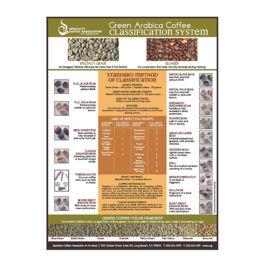 SCAA -  Green Arabica Class Chart Poster