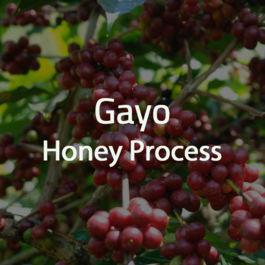 Green Bean Kopi Arabica Aceh Gayo Honey Process - 1 Kg