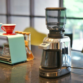 Welhome - Coffee Grinder Conical Burr with Scale ZD-17W