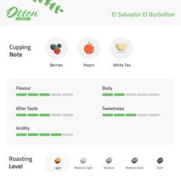 Drip Coffee 10g Arabica El Salvador El Borbollon (4 Sachet)